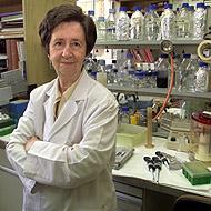 Margarita Salas, bióloga e investigadora del Centro de Biología Molecular Severo Ochoa
